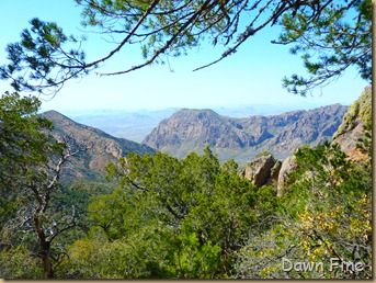 South rim hike,Big bend_077