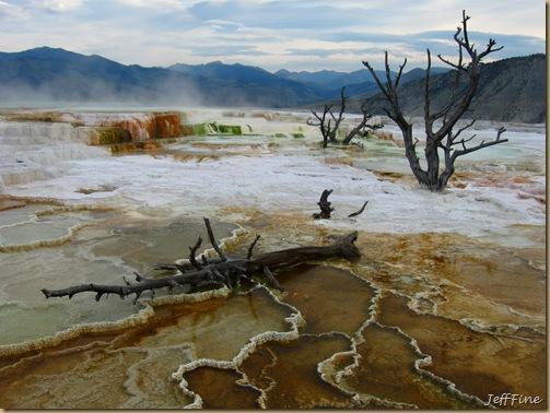 Yellowstone Jeffs pics_20090906_025