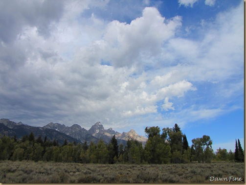 Drive in tetons_20090913_069