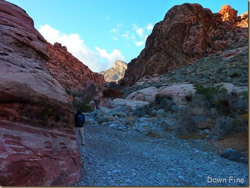 calico hike w David_031
