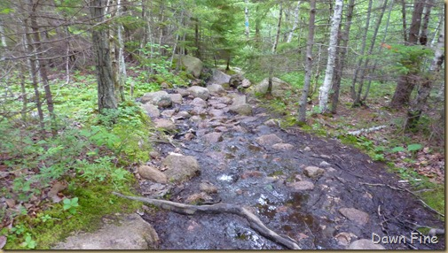 Gorham mt hike_101