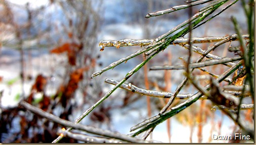 snow and ice_036