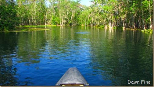 Silver Springs State Park_031