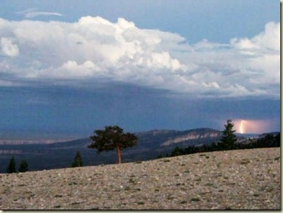 Lightning from Marble View Forest Road219 Kaibab National Forest Arizona