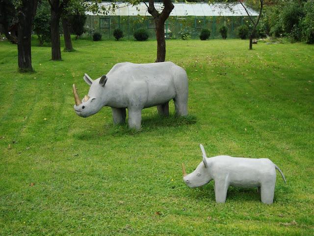 Koszalińskie nosorożce