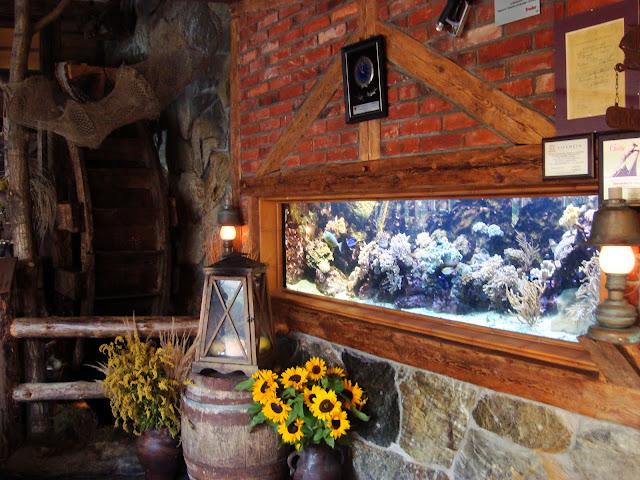 Akwarium morskie w sali młynowej