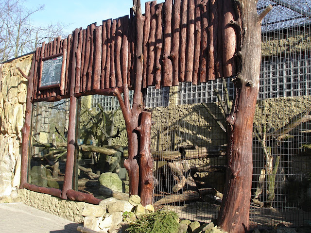 Woliera panter perskich