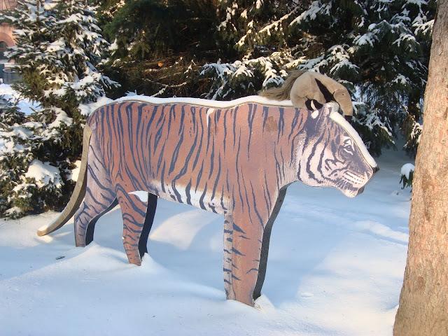 Tadziu i tygrys