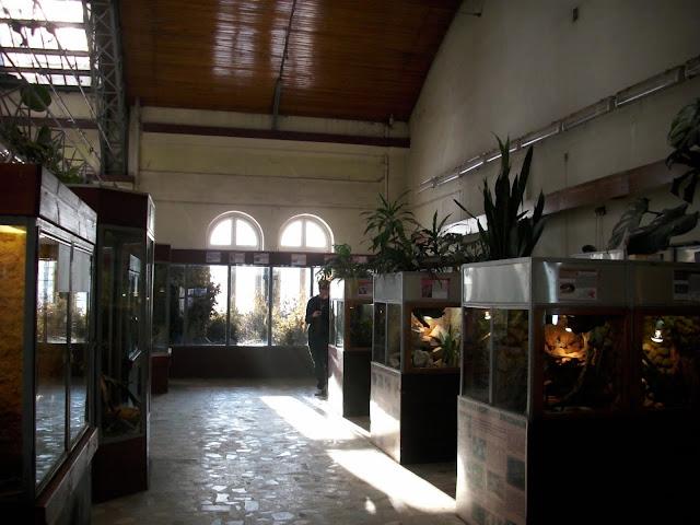 Terrarium - Zoo Wrocław