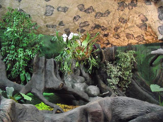 Jedno z akwariów w zamojskim zoo (fot. Zoo Zamość)