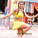 A new and exclusive and stunnig pictures   Sree Devika