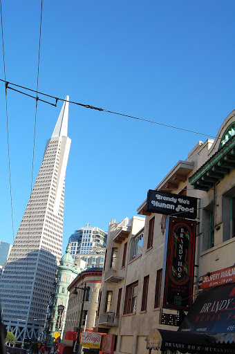 A view of the Transamerica Tower.