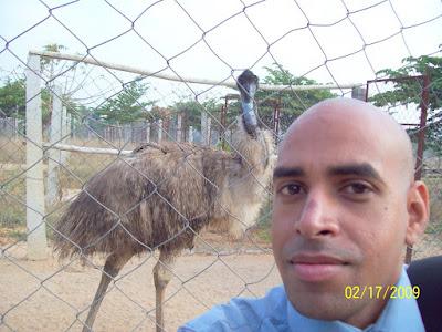 @ emu farm