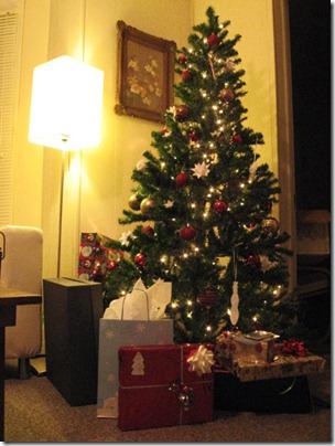 Christmas 2009 012