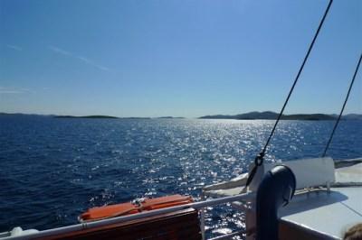 Boat cruse!