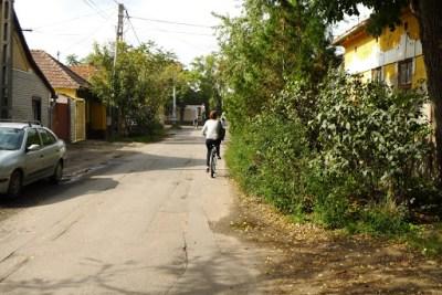 Bike ride gets scenic.
