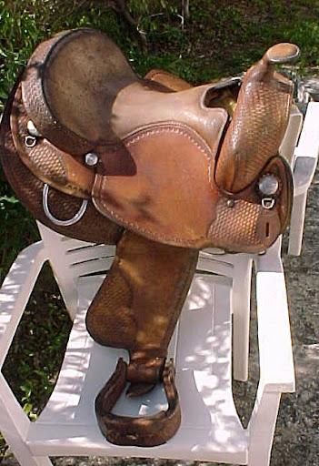 My New Saddle