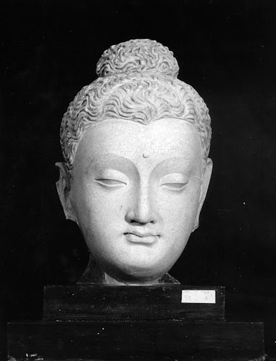 Afghan museum, Kaboul 1963 - Hadda - Head of Buddha, stucco (1st-2nd Century A.D.) Photo: UNESCO
