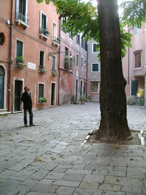 Gli alberi di Venezia
