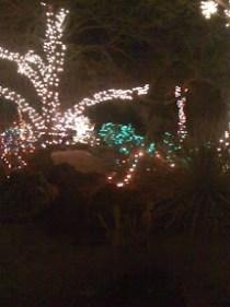 Ethel M. Chocolate Cactus Garden holiday lights