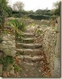 garden steps_1_1