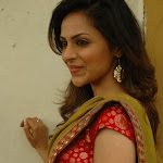Malluwood homely actress pictures
