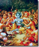 Krishna enacted many wonderful pastimes with His friends in Vrindavana