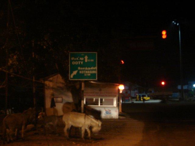 Bhavani Bridge - Kothagiri pirivu