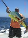 Dorado caught in East Cape, Baja