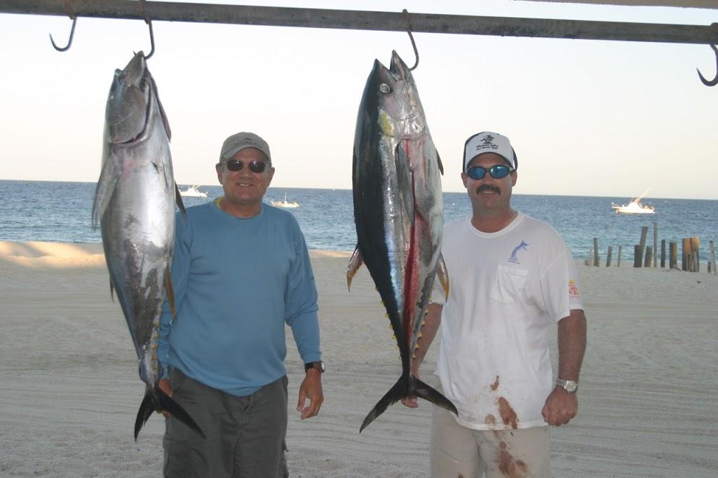 Yellowfin Tuna fishing in East Cape