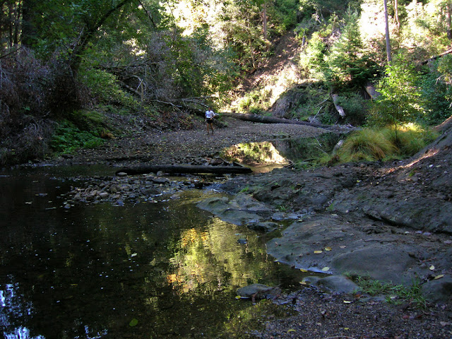 Pescadero Creek at Shaw Flat