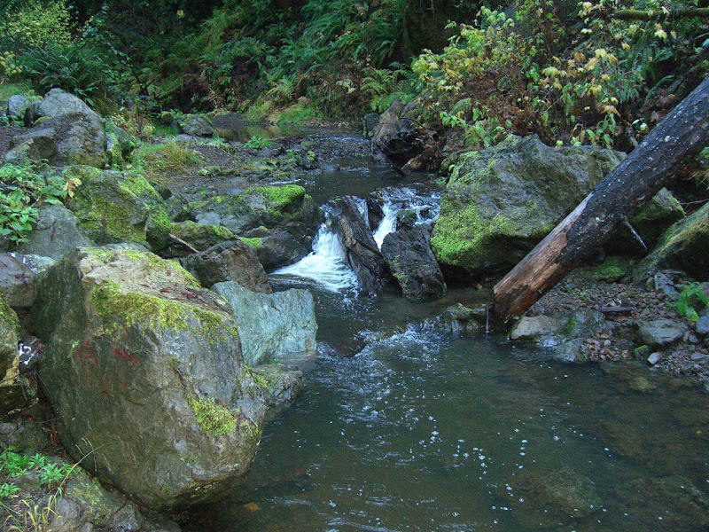 Small waterfall along the Little River