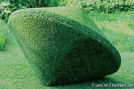 Grass Sculptures
