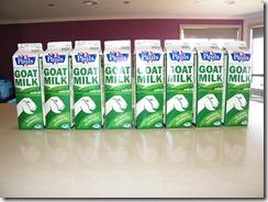 8 litre keçi sütü oda sıcaklığına gelene kadar bekliyor.