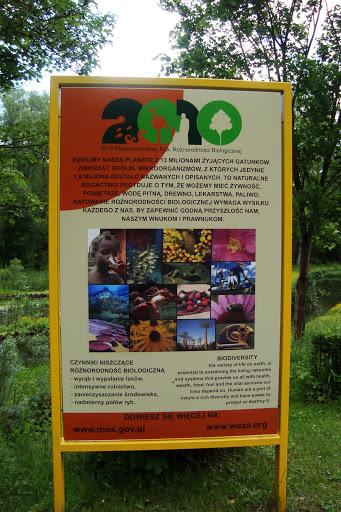 2010 Międzynarodowym Rokiem Bioróżnorodności
