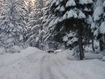 Rocky Point snow day (25)