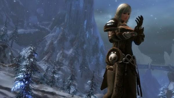 Guild Wars 2 NornRanger5