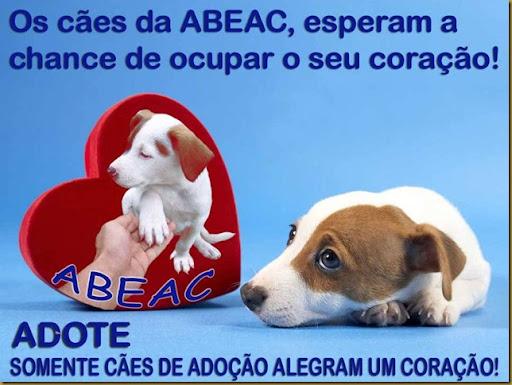 abeac_heart