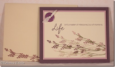 life plum