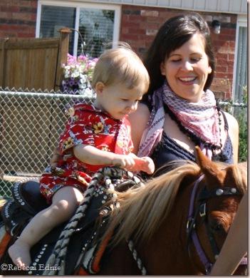 s and s pony2