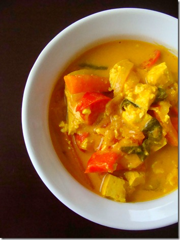 yellow curry (2)