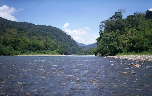Cauce del Rio Changuinola en la Reserva de la Biósfera La Amistad Panamá, provincia de Bocas del Toro