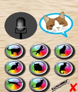 translator talking cat screenshot 7
