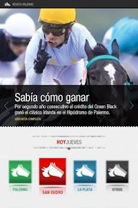 Revista Palermo screenshot 0