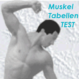 Compendium of Muscle Test