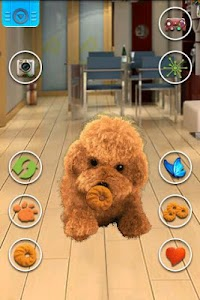 Talking Teddy Dog screenshot 2