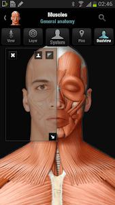Virtual Human Body screenshot 1
