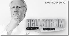 hellstrom_logofelt_tors