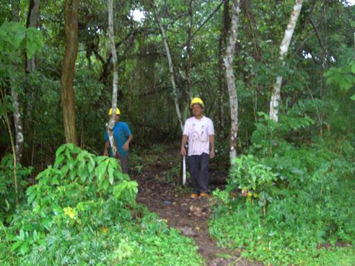 Macheteros de Carlos Pasco invaden bosque para talarlo