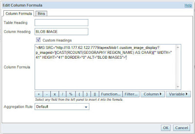Oracle BI EE 10 1 3 32 – Displaying BLOB images – Using Pl